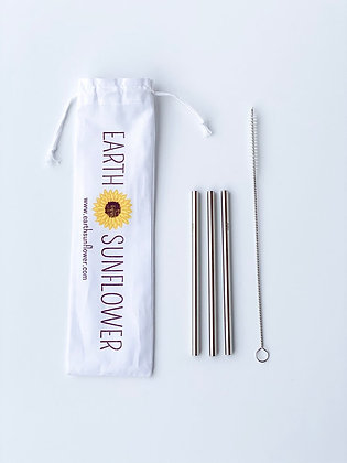 Cocktail Stainless Steel Straws