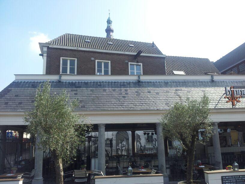 Vishal Breda 03
