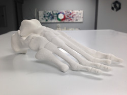 Life-size foot