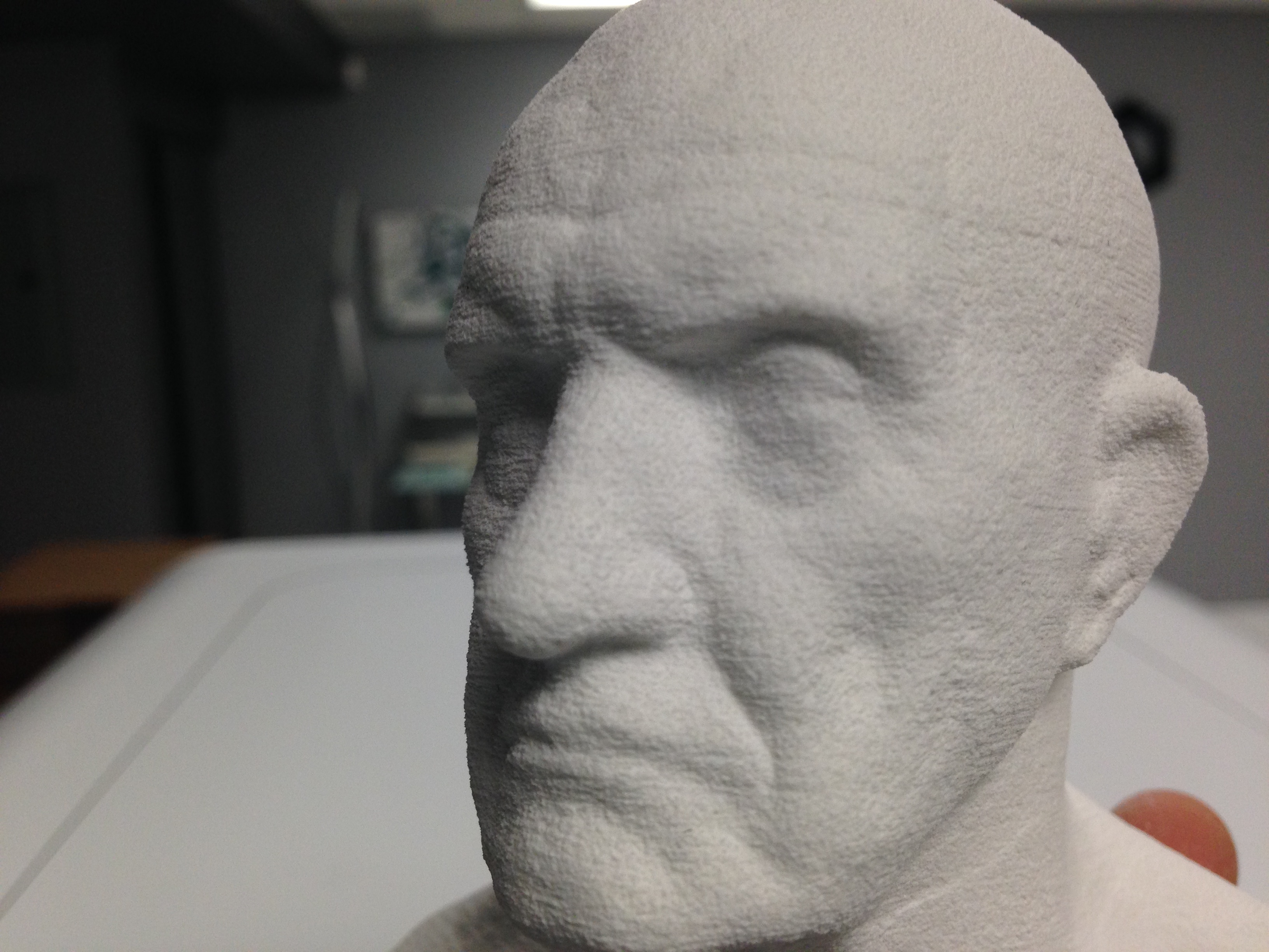Express 3D printed man