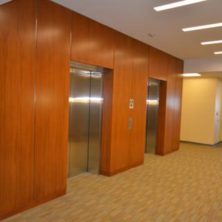 Sycamore Wall Panels