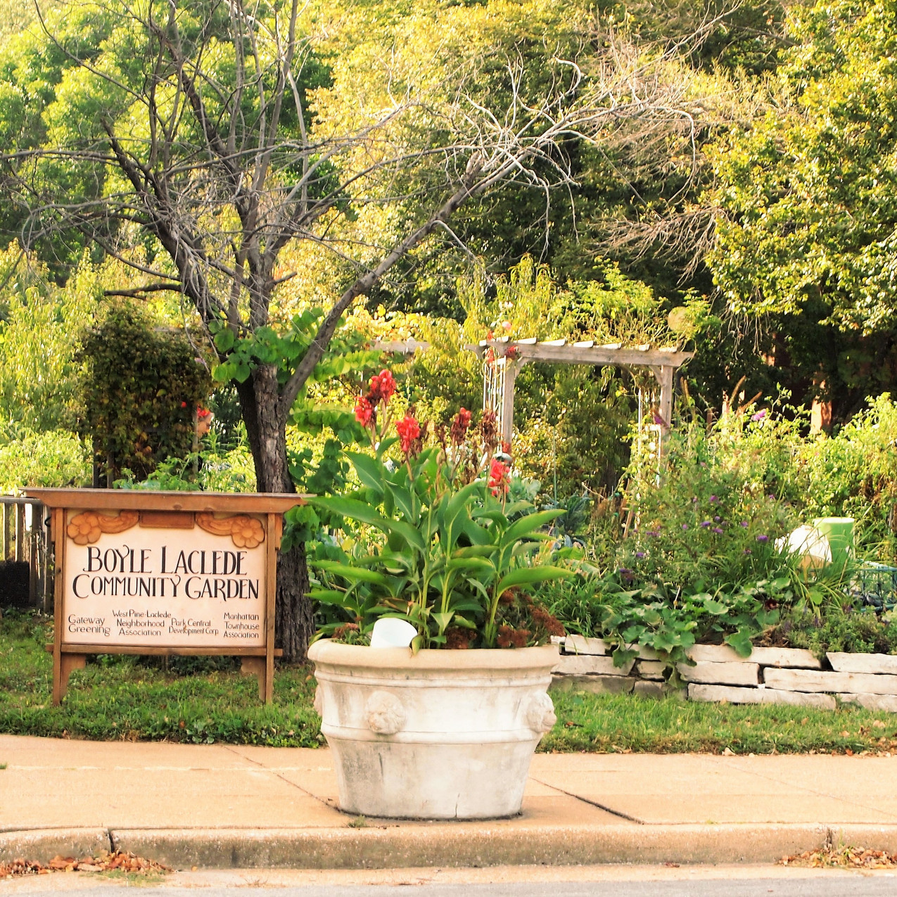 Community Garden - Boyle & Laclede 63108