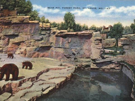 Saint Louis Zoo Trivia - Bear Pits History