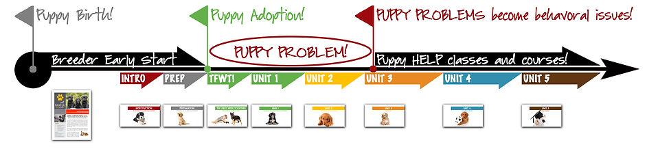 PUPPY PROBLEM InfoGraphic.jpg