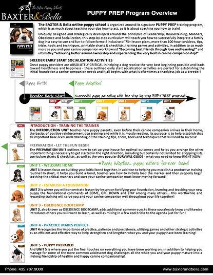 B&B PUPPY PREP program overview.jpg