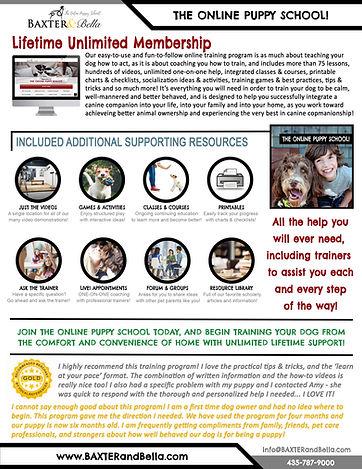 B&B The Online Puppy School.jpg