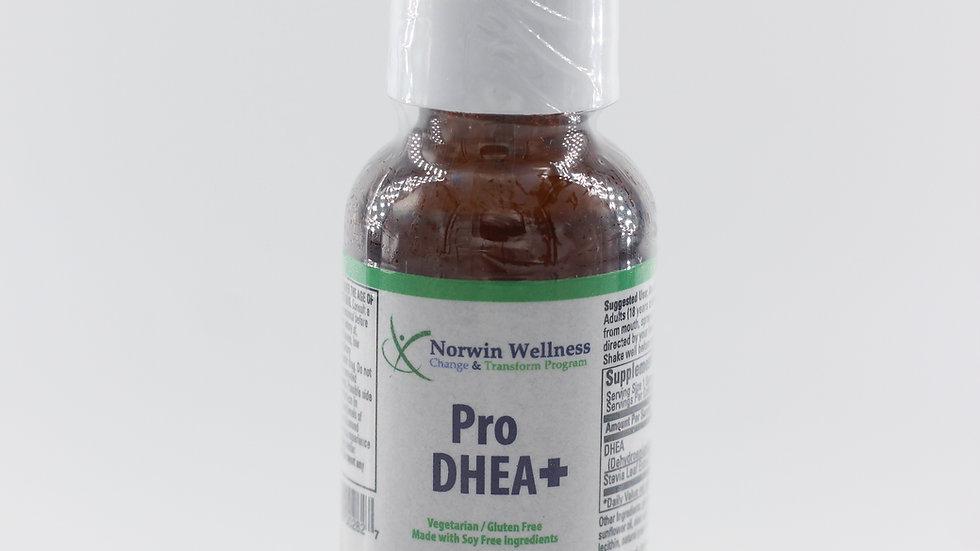 Pro DHEA+
