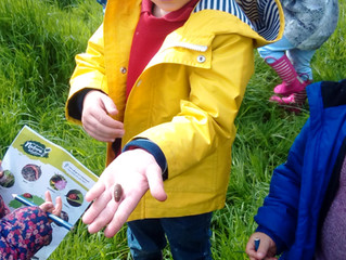 What's been going on at Forest School this week?....
