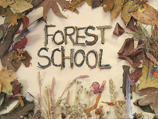 Forest Schools Approach to Learning