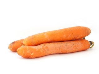 CARROT CURE AND MORE FOR WARTS