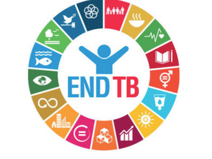 First UN High-Level Meeting on TB sees UK invest in TB R&D