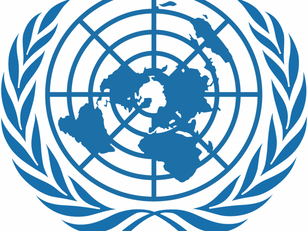 UN convenes High Level Meeting on AMR