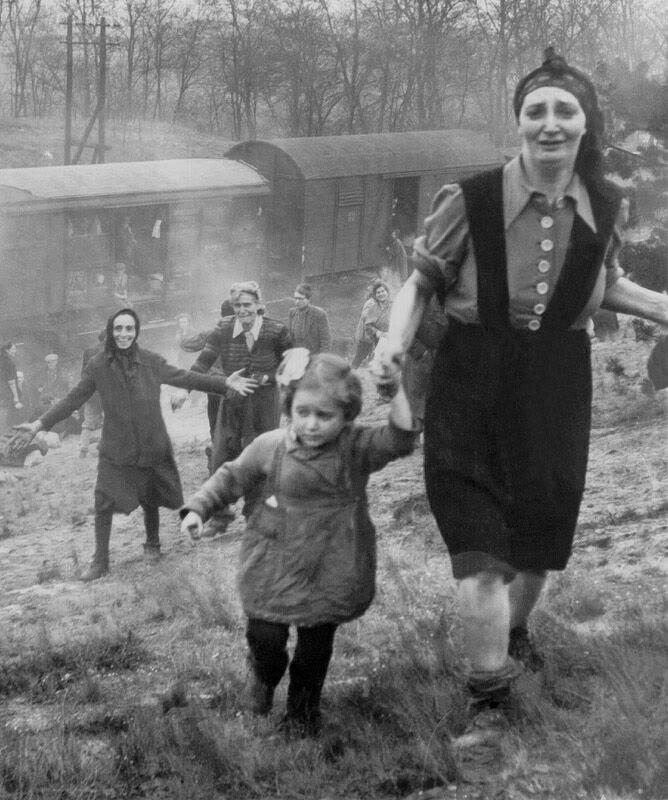 seeking-kin-holocaust-mystery.jpg