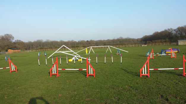 Agility Paddock To Hire