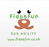 fidosfun dog agility training wokingham, d4dogs, exclusively dogs, ryslip agility barn, dog training, agility equipment, agility training, dog exercise fields