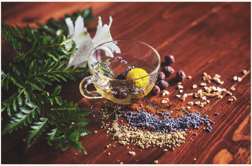 10 Ingredients For a Better Immune System