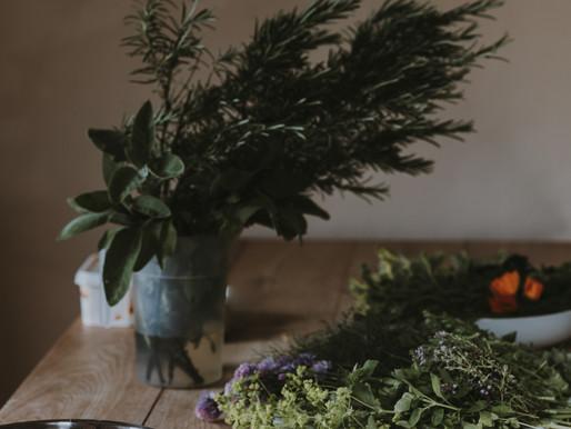 Alveus Herbal - Nature's Soothing Helpers