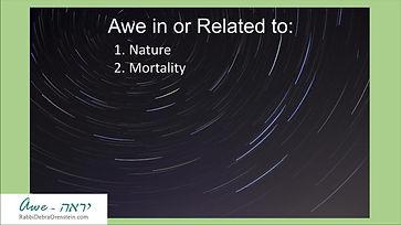 RDO IJS Awe Exercise 3 - Mortality.jpg