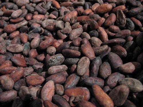 Cacao non torréfié