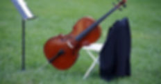 Highland Chamber Players in a field