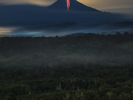 Ganador Ecuatoriano del Sony World Photography Awards
