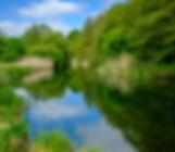 River Itchen - Bishopstoke