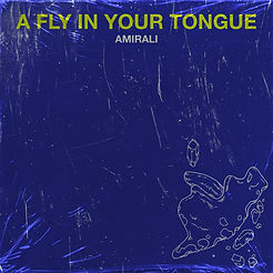 3. Amirali - A Fly In Your Tongue (Singl