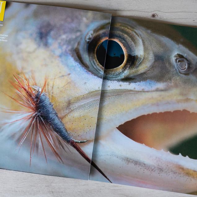 Anglers Journal, fall 2018