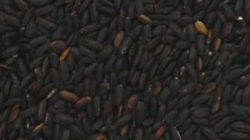 Black Nerone Rice - 200g