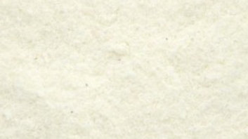 Coconut Flour - 100g