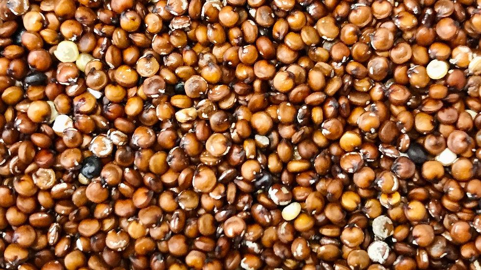 Red Quinoa (O) - 300g