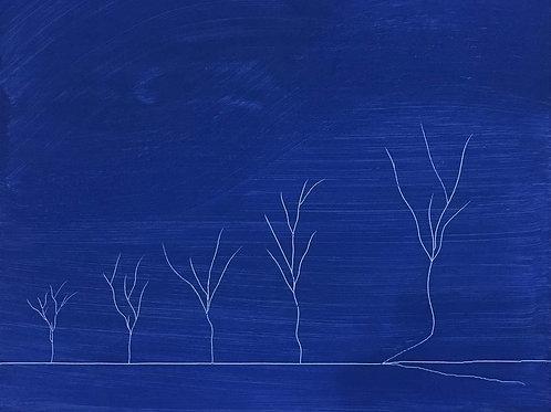 Πέντε Δέντρα - Five Trees