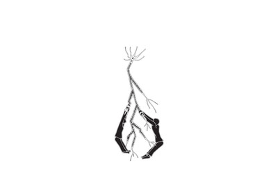 SketchByAnzan_120.jpg