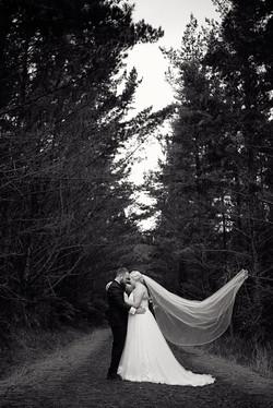 wedding photographers Auckland91986