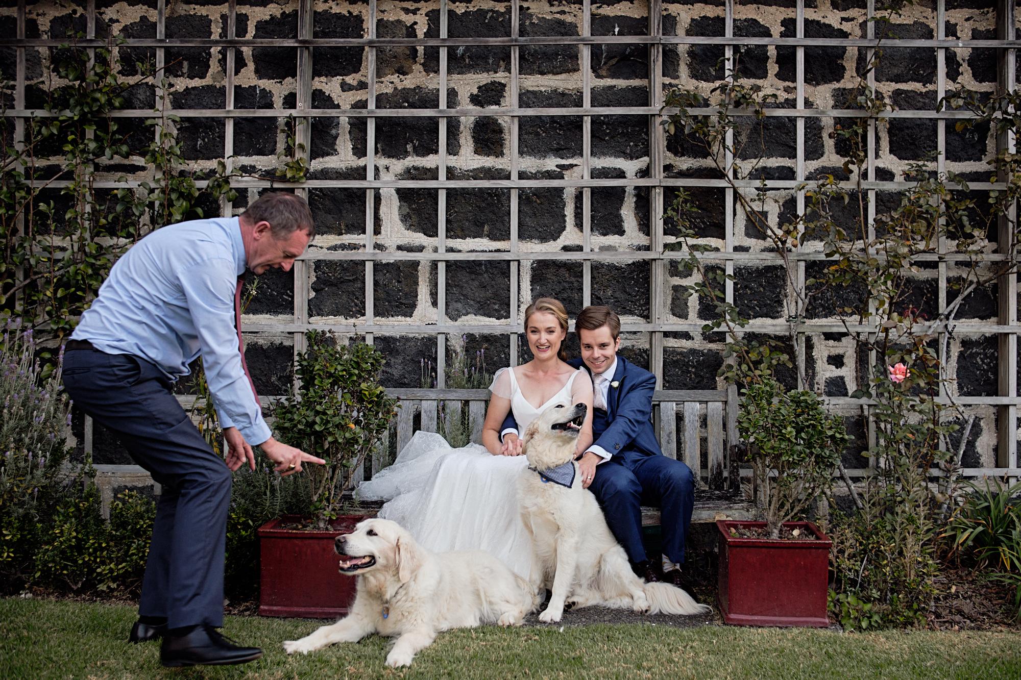 wedding photographers Auckland 87578