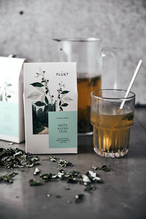 Meža aveņu tēja