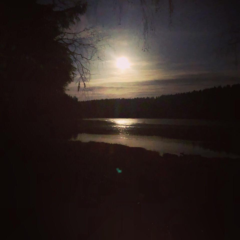 Свет Луны открывает виденье. Автор статьи таролог Алёна Панфилова. Запись на консультацию на расклад Таро WhatsApp, Viber +79663469561