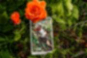 Погадайте бесплатно онлайн, выберите карту и получите бесплатный совет карт Таро на сегодня от таролога Алёны Панфиловой. Карта Дня Семерка Жезлов. Вытащите одну карту из колоды Таро. Погадайте на одну карту Таро онлайн. Карта Таро  расшифровка и толкование. Бесплатное гадание в Таро Кафе - Карта Дня.