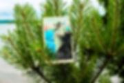 Туз Мечей - карта дня! Погадайте бесплатно онлайн, выберите карту и получите бесплатный совет карт Таро на сегодня от таролога Алёны Панфиловой. Вытащите одну карту из колоды Таро. Гадание на одну карту Таро онлайн. Карта Таро расшифровка и толкование. Бесплатное гадание в Таро Кафе - Карта Дня.