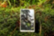 Отшельник - карта дня! Погадайте бесплатно онлайн, выберите карту и получите бесплатный совет карт Таро на сегодня от таролога Алёны Панфиловой. Вытащите одну карту из колоды Таро. Гадание на одну карту Таро онлайн. Карта Таро расшифровка и толкование. Бесплатное гадание в Таро Кафе - Карта Дня.