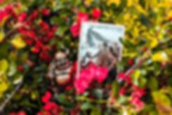 Аркан Смерть - карта дня! Погадайте бесплатно онлайн, выберите карту и получите бесплатный совет карт Таро на сегодня от таролога Алёны Панфиловой. Вытащите одну карту из колоды Таро. Гадание на одну карту Таро онлайн. Карта Таро расшифровка и толкование. Бесплатное гадание в Таро Кафе - Карта Дня.