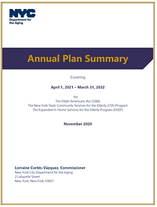 annual plan summary graphic.png