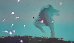 Fugit-Sakura-live-experiment-soiree-IRL-2015.jpg
