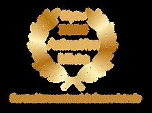 pepite 2020 - animation mixte - festival