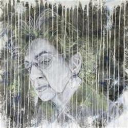 Andrea Coltman