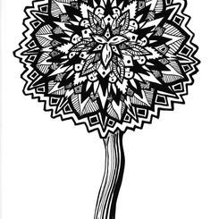 Dandelion Symmetry (2018)