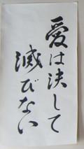 DSC04724 (4).JPG
