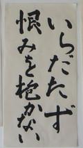 DSC04723 (8).JPG