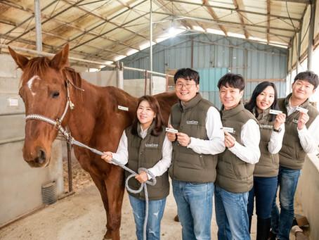 ULikeKorea taps global horse health care market