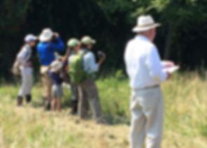 Annual NABA Butterfly Count 2015